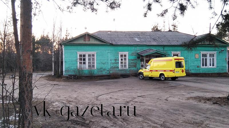 В Поморье за сутки 76 новых случаев COVID-19, есть и в Шенкурском районе